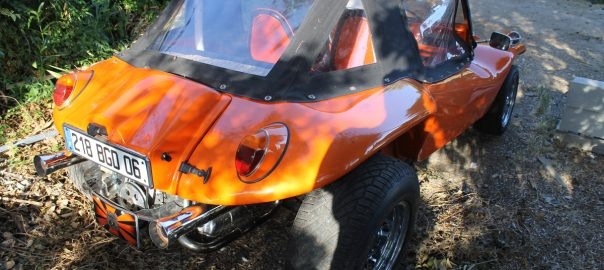 Buggy orange alex